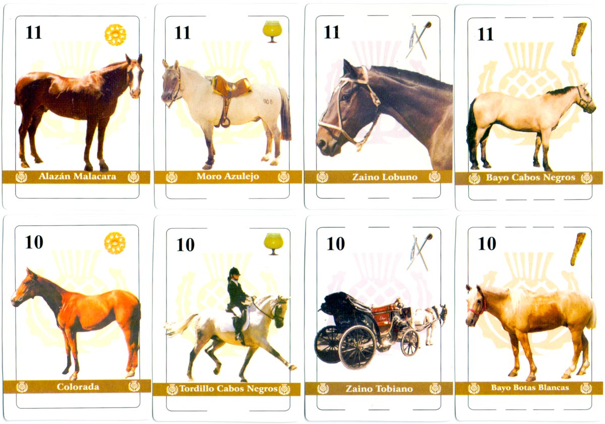 """Caballos Argentinos"" playing cards with photographs of horses and ponies on each card, anonymous publisher, 2005"