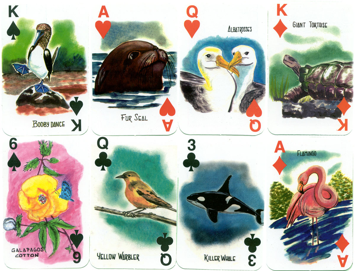 Galapagos Islands Souvenir Playing Cards