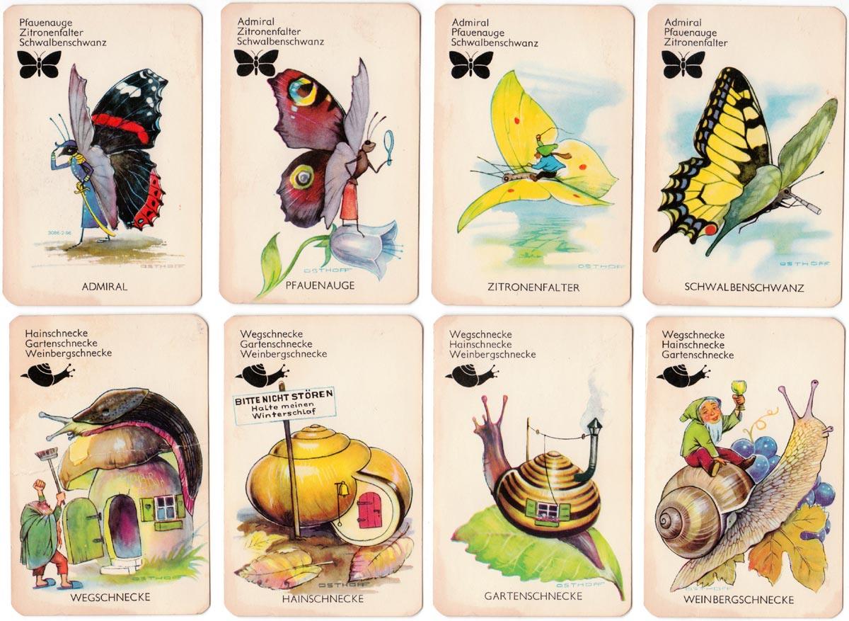"""""""Kleine Tierwelt"""" wildlife quartet game designed by Heinz Osthoff, published by Bielefelder Spielkarten GmbH, 1963"""