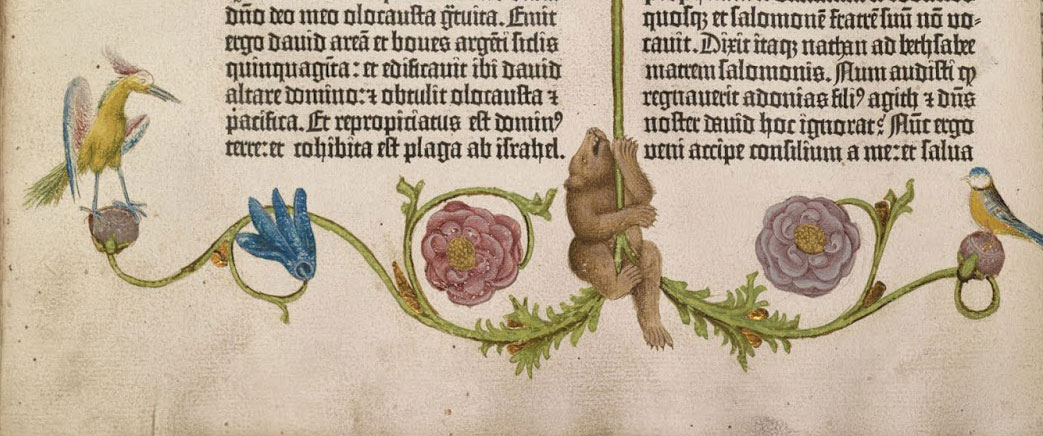 a climbing bear from the Gutenberg Bible, William Scheide collection, f.160v