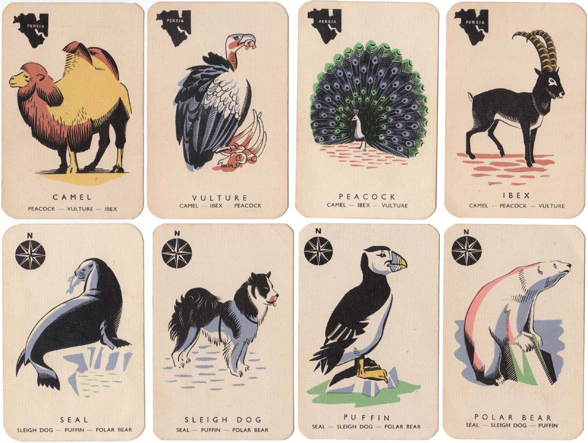 Animal Families by Paul & Marjorie Abbatt Ltd, c.1970