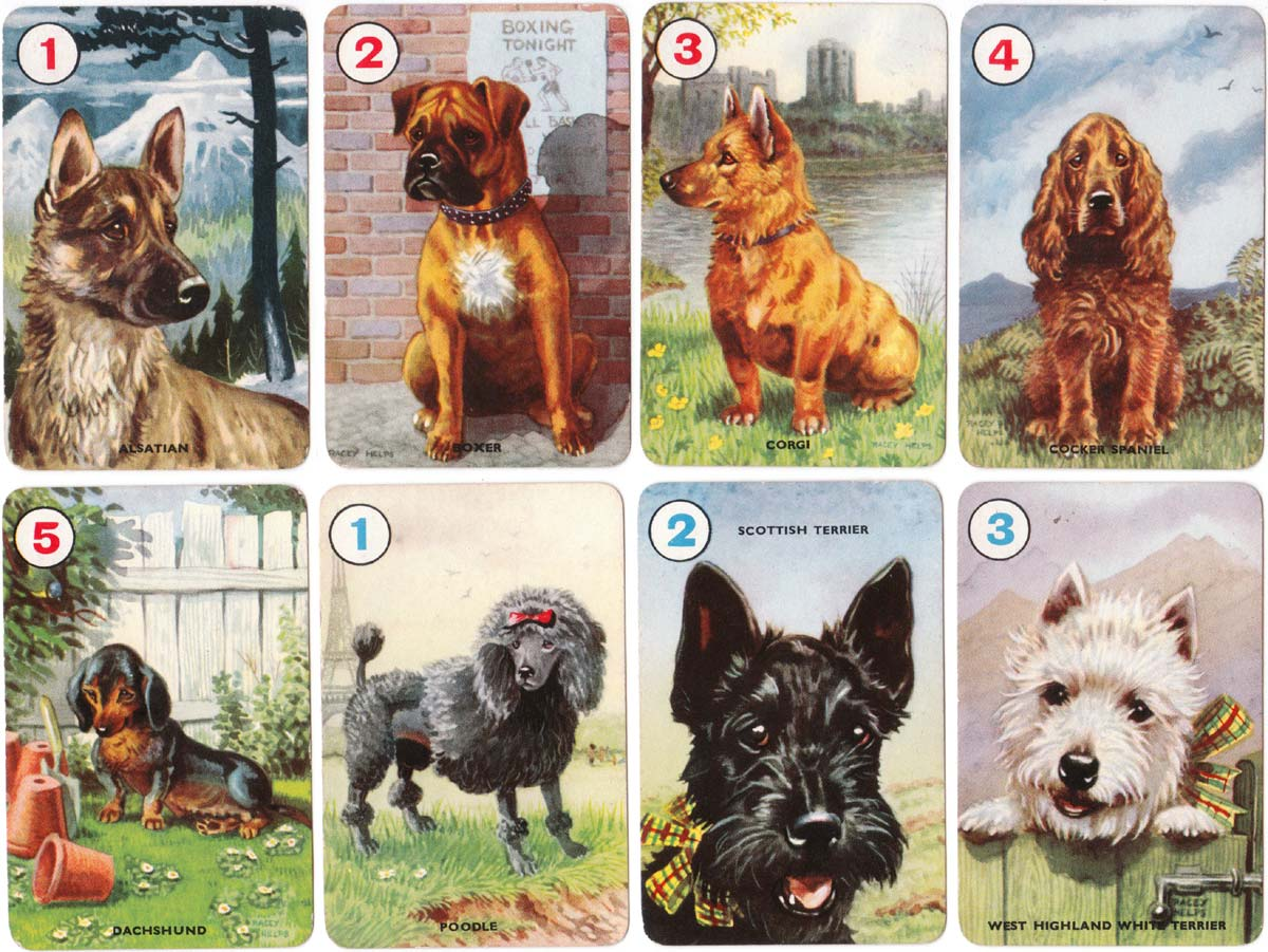 Pets card game illustrated by Racey Helps and published by Pepys Games in 1955