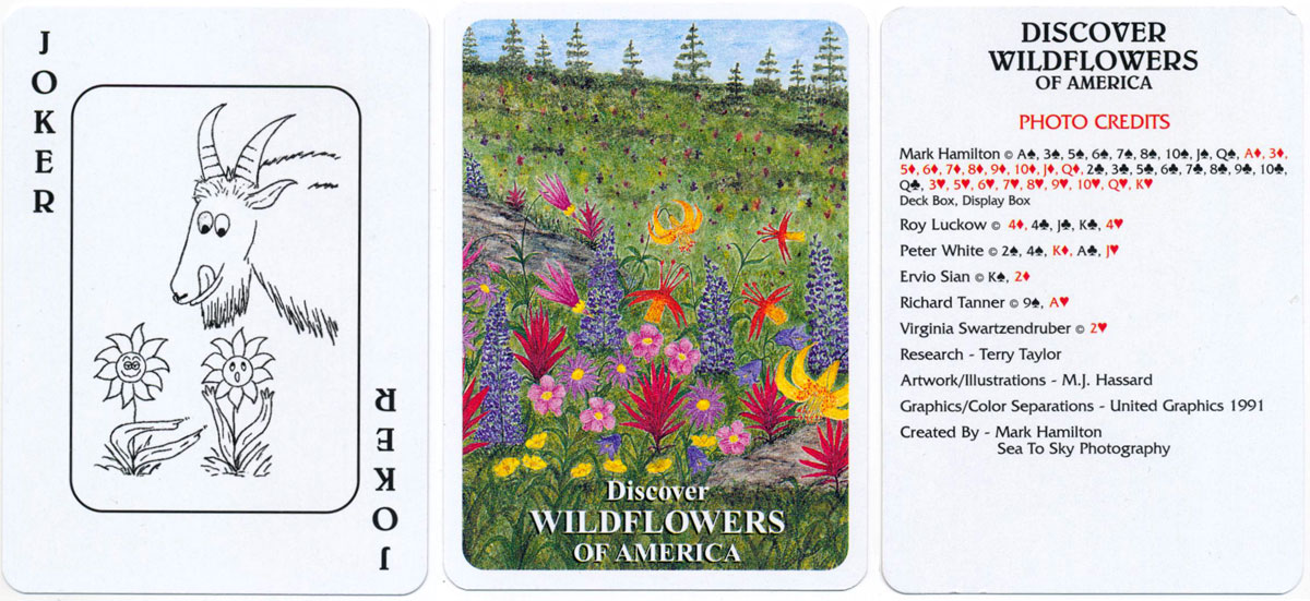 """Discover Wildflowers of America"" playing cards, 1991"